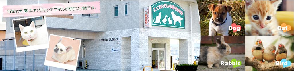 当院は犬・猫・エキゾチックアニマルかかりつけ院です。